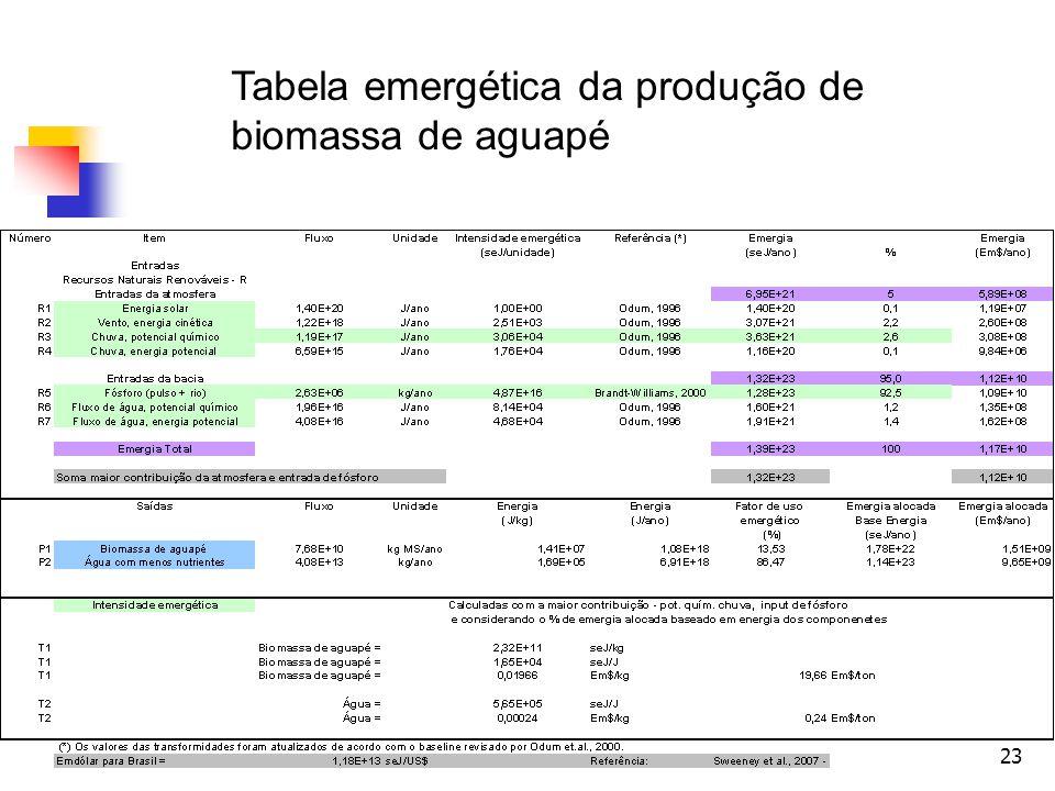 23 Tabela emergética da produção de biomassa de aguapé