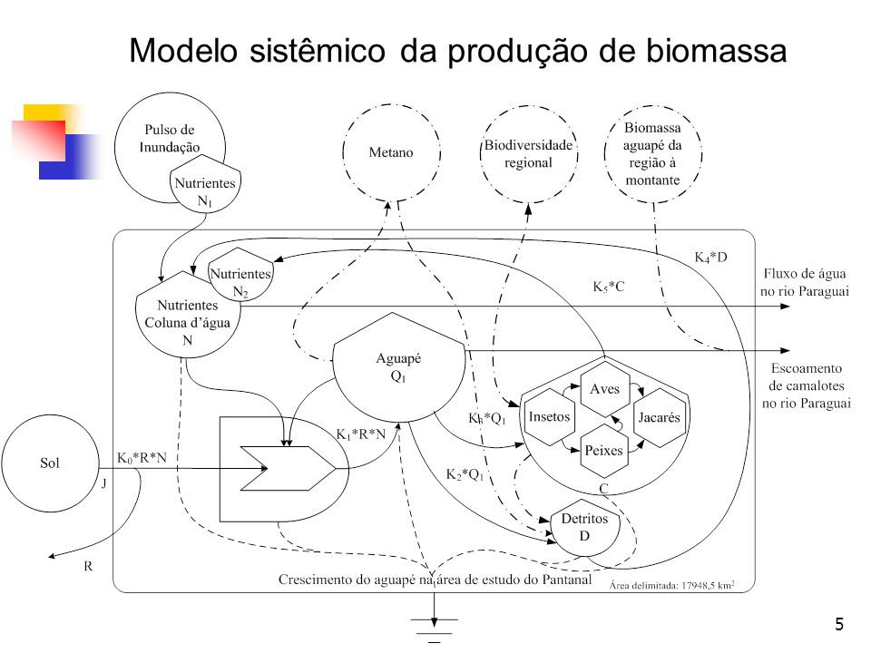 16 Entrada de fósforo com a ciclagem pelos consumidores O volume de fósforo reciclado pelos consumidores foi estimado sobre a contribuição dos jacarés que são abundantes no Pantanal.