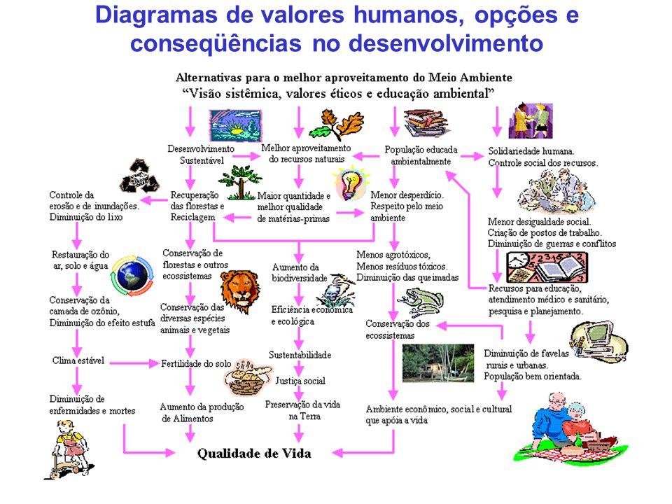 Diagramas de valores humanos, opções e conseqüências no desenvolvimento