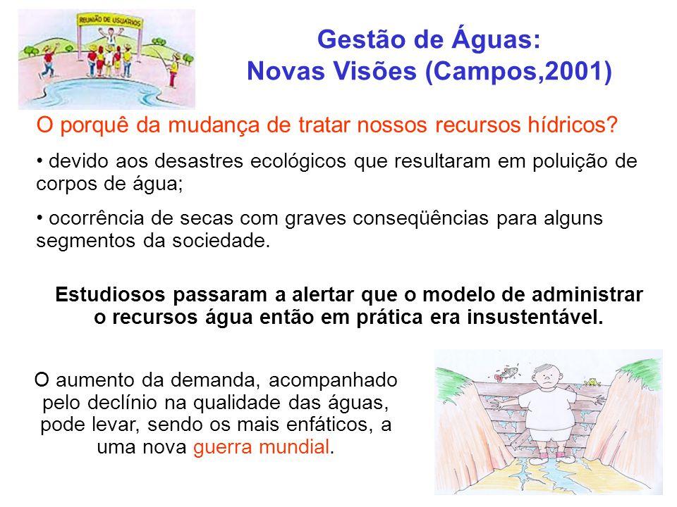 Gestão de Águas: Novas Visões (Campos,2001) O porquê da mudança de tratar nossos recursos hídricos? devido aos desastres ecológicos que resultaram em
