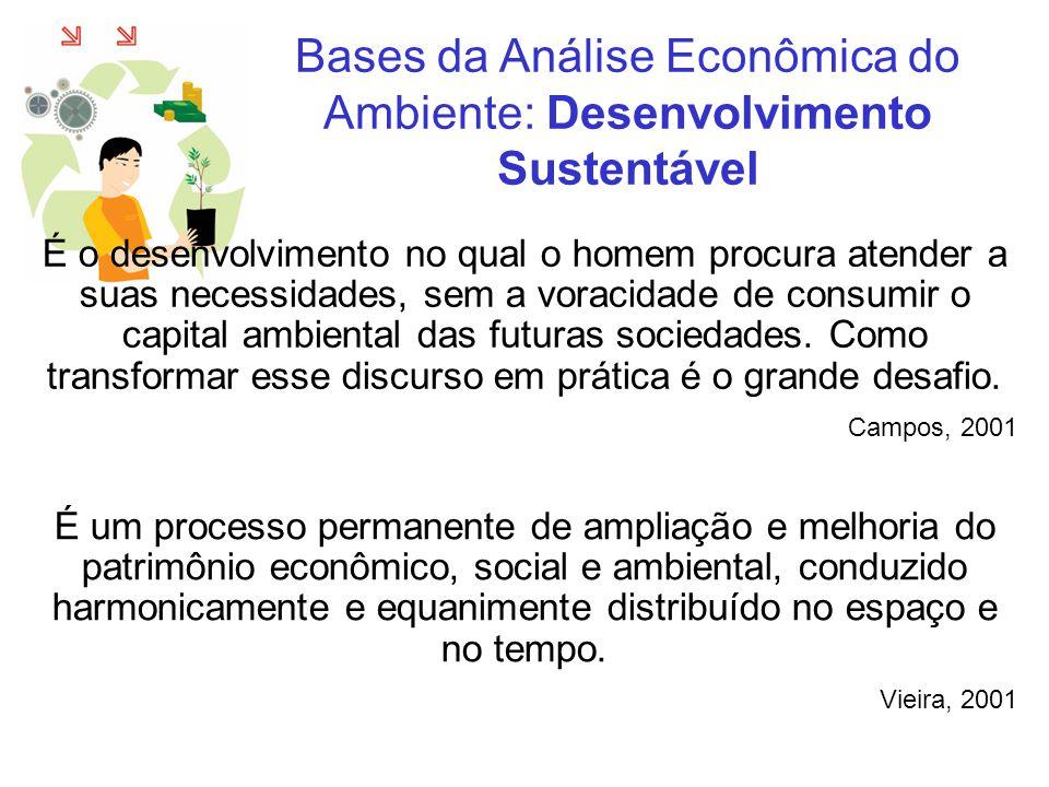 Bases da Análise Econômica do Ambiente: Problemas Ambientais Lanna, 2001 Os problemas ambientais brasileiros (e também mundiais) decorrem, em grande parte, das carências do processo decisório que orienta a utilização dos recursos ambientais, particularmente, no que se refere à articulação e coordenação das ações e à participação da sociedade interessada na negociação que orienta a tomada de decisão.