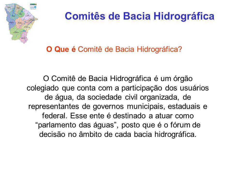 O Que é Comitê de Bacia Hidrográfica? Comitês de Bacia Hidrográfica O Comitê de Bacia Hidrográfica é um órgão colegiado que conta com a participação d