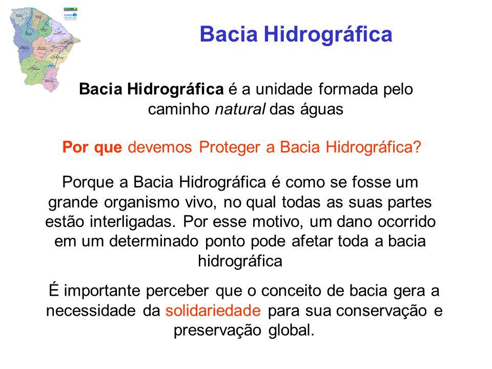 Por que devemos Proteger a Bacia Hidrográfica? Bacia Hidrográfica Porque a Bacia Hidrográfica é como se fosse um grande organismo vivo, no qual todas