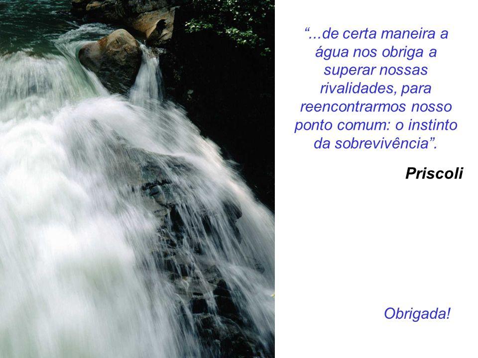 """""""...de certa maneira a água nos obriga a superar nossas rivalidades, para reencontrarmos nosso ponto comum: o instinto da sobrevivência"""". Priscoli Obr"""
