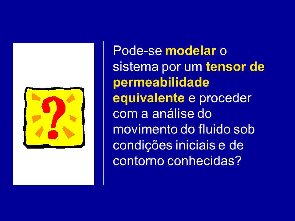 Pode-se modelar o sistema por um tensor de permeabilidade equivalente e proceder com a análise do movimento do fluido sob condições iniciais e de cont