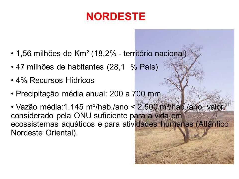 NORDESTE 1,56 milhões de Km² (18,2% - território nacional) 47 milhões de habitantes (28,1% País) 4% Recursos Hídricos Precipitação média anual: 200 a