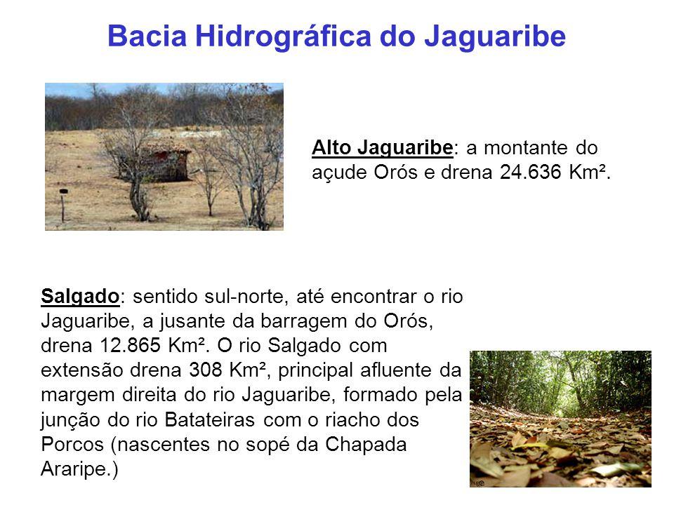 Alto Jaguaribe: a montante do açude Orós e drena 24.636 Km². Salgado: sentido sul-norte, até encontrar o rio Jaguaribe, a jusante da barragem do Orós,