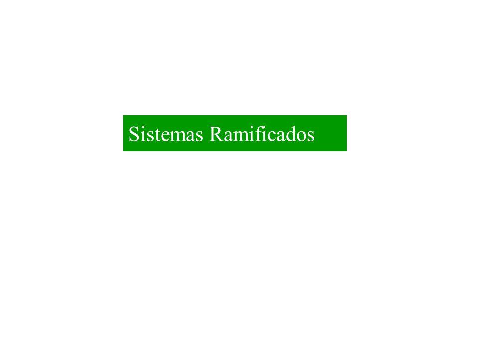 Sistemas Ramificados