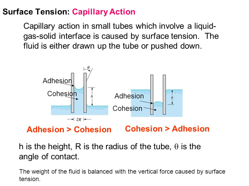 Surface Tension: Capillary Action Free Body Diagram for Capillary Action for a Wetted Surface: For clean glass in contact with water,   0°, and thus as R decreases, h increases, giving a higher rise.