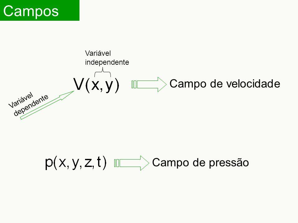 Campos Campo de velocidade Campo de pressão Variável independente Variável dependente