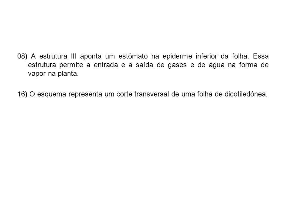 DESEJO A TODOS OS VESTIBULANDO BOA PROVA!! BOA SORRRRTTEEE!!!!! Profª: Cris