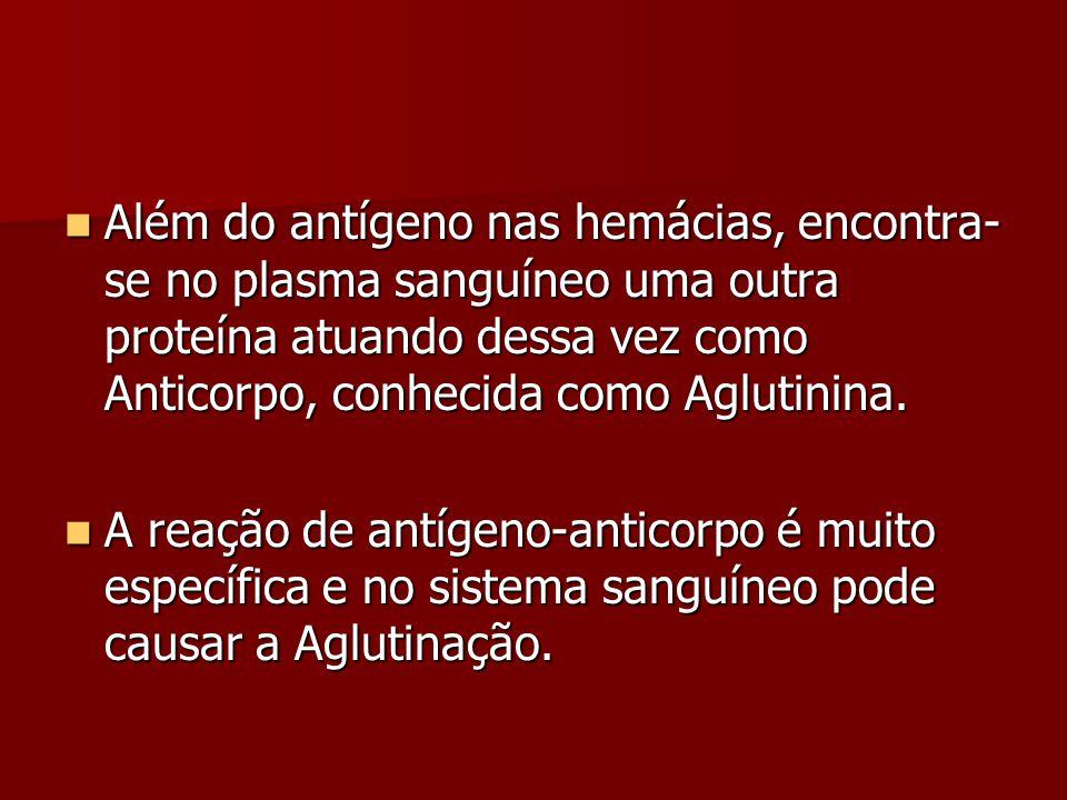 Além do antígeno nas hemácias, encontra- se no plasma sanguíneo uma outra proteína atuando dessa vez como Anticorpo, conhecida como Aglutinina. Além d