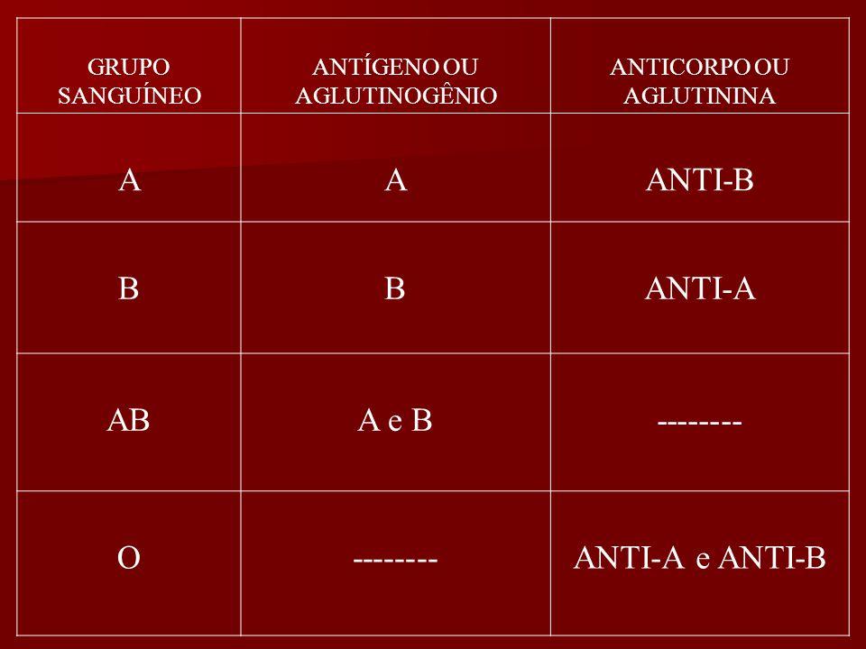 GRUPO SANGUÍNEO ANTÍGENO OU AGLUTINOGÊNIO ANTICORPO OU AGLUTININA AAANTI-B BBANTI-A ABA e B-------- O ANTI-A e ANTI-B