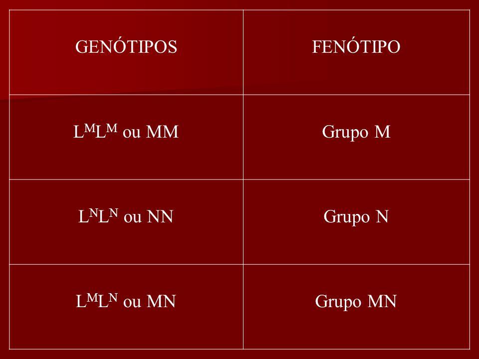 GENÓTIPOSFENÓTIPO L M L M ou MMGrupo M L N L N ou NNGrupo N L M L N ou MNGrupo MN