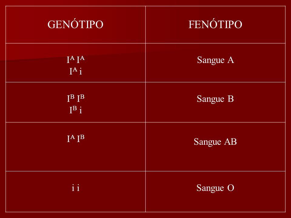 GENÓTIPOFENÓTIPO I A I A i Sangue A I B I B i Sangue B I A I B Sangue AB i Sangue O