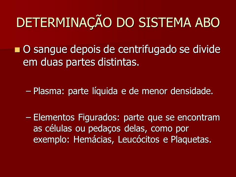 DETERMINAÇÃO DO SISTEMA ABO O sangue depois de centrifugado se divide em duas partes distintas. O sangue depois de centrifugado se divide em duas part