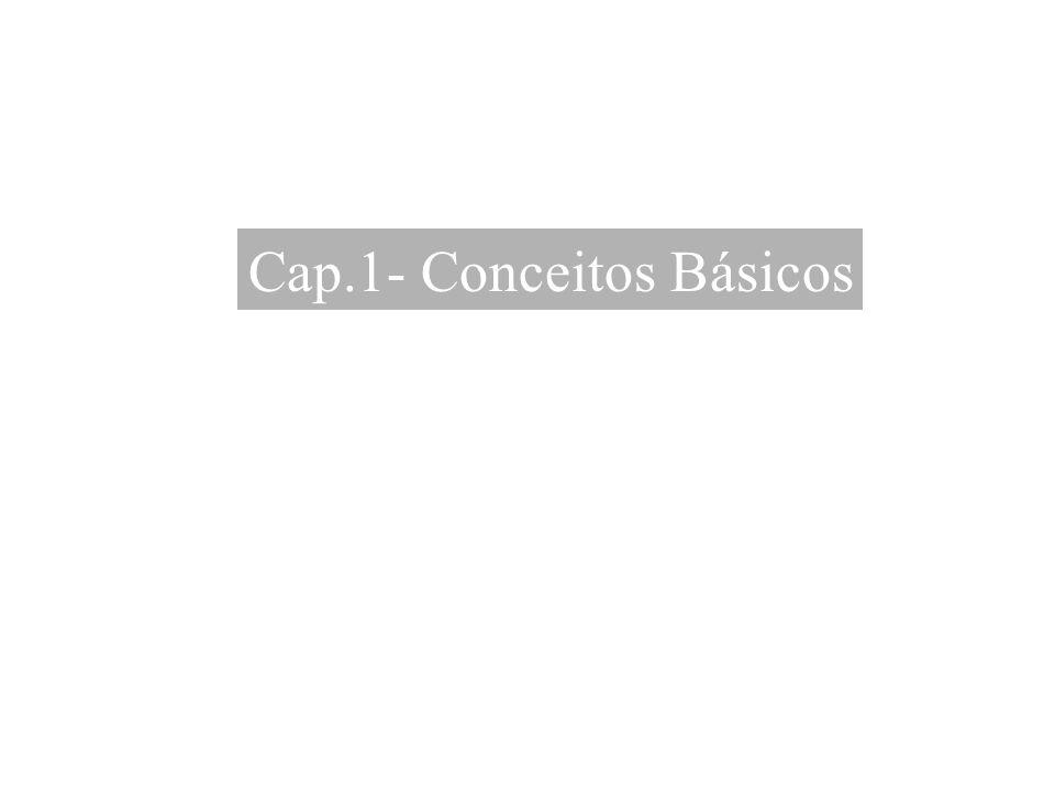 Cap.1- Conceitos Básicos
