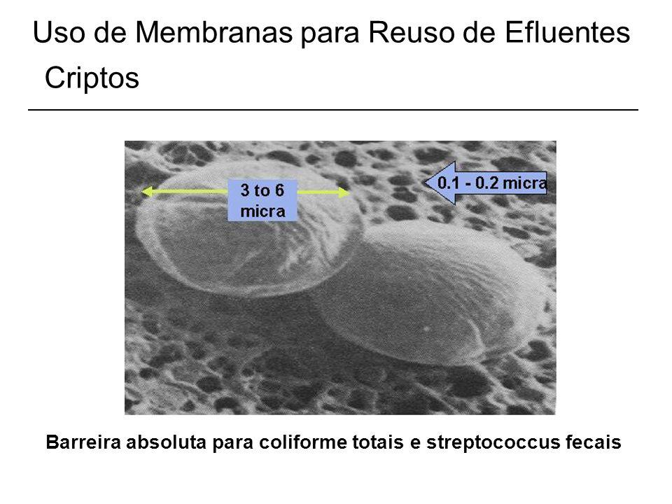 Uso de Membranas para Reuso de Efluentes Criptos Barreira absoluta para coliforme totais e streptococcus fecais