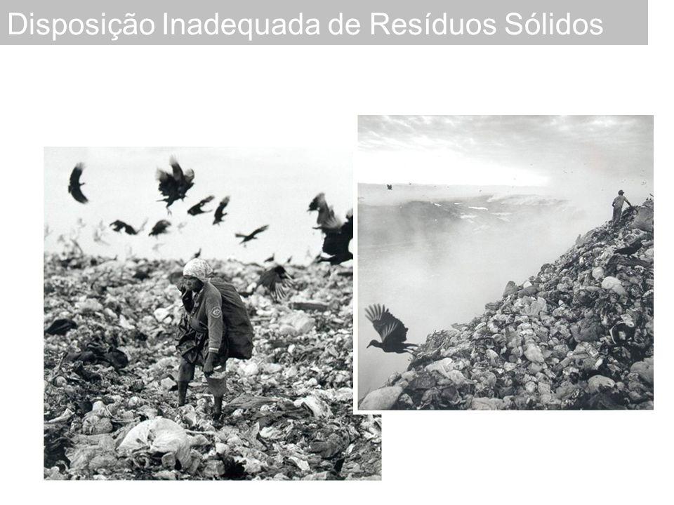 Fundamental para se poder projetar as quantidades de resíduos a coletar e a dispor.