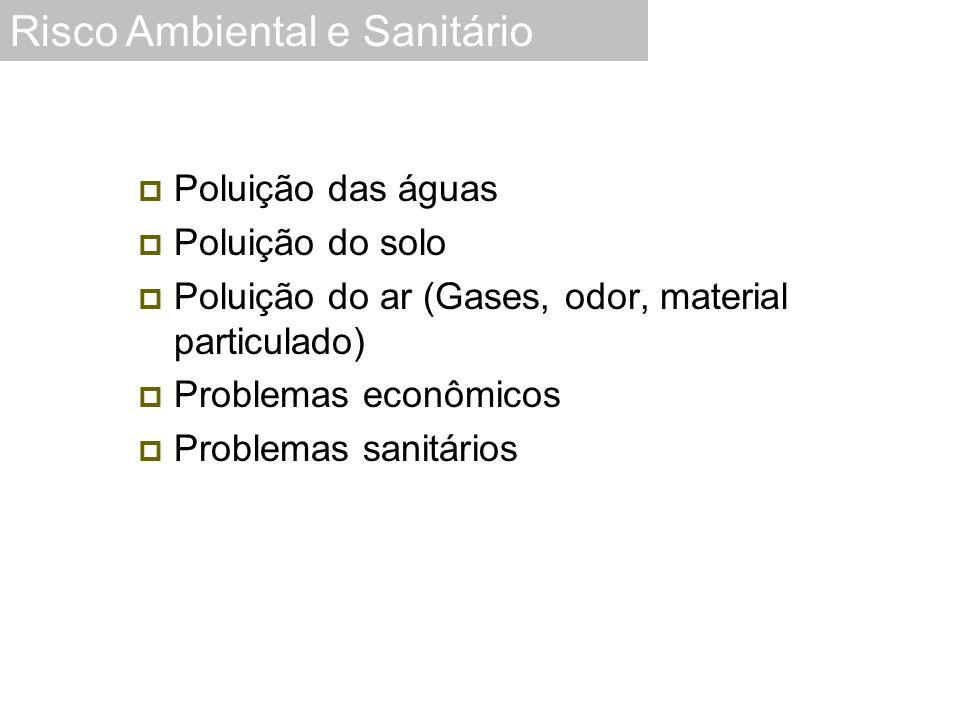 Poluição das águas  Poluição do solo  Poluição do ar (Gases, odor, material particulado)  Problemas econômicos  Problemas sanitários Risco Ambie
