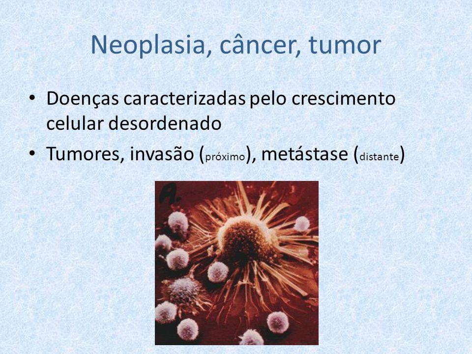 Neoplasia, câncer, tumor Doenças caracterizadas pelo crescimento celular desordenado Tumores, invasão ( próximo ), metástase ( distante )