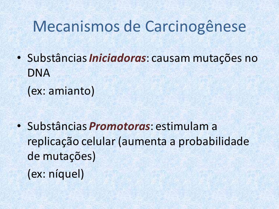 Mecanismos de Carcinogênese Substâncias Iniciadoras: causam mutações no DNA (ex: amianto) Substâncias Promotoras: estimulam a replicação celular (aume
