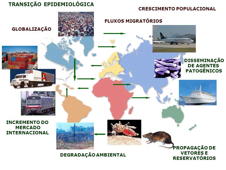 GLOBALIZAÇÃO CRESCIMENTO POPULACIONAL INCREMENTO DO MERCADO INTERNACIONAL FLUXOS MIGRATÓRIOS TRANSIÇÃO EPIDEMIOLÓGICA PROPAGAÇÃO DE VETORES E RESERVAT