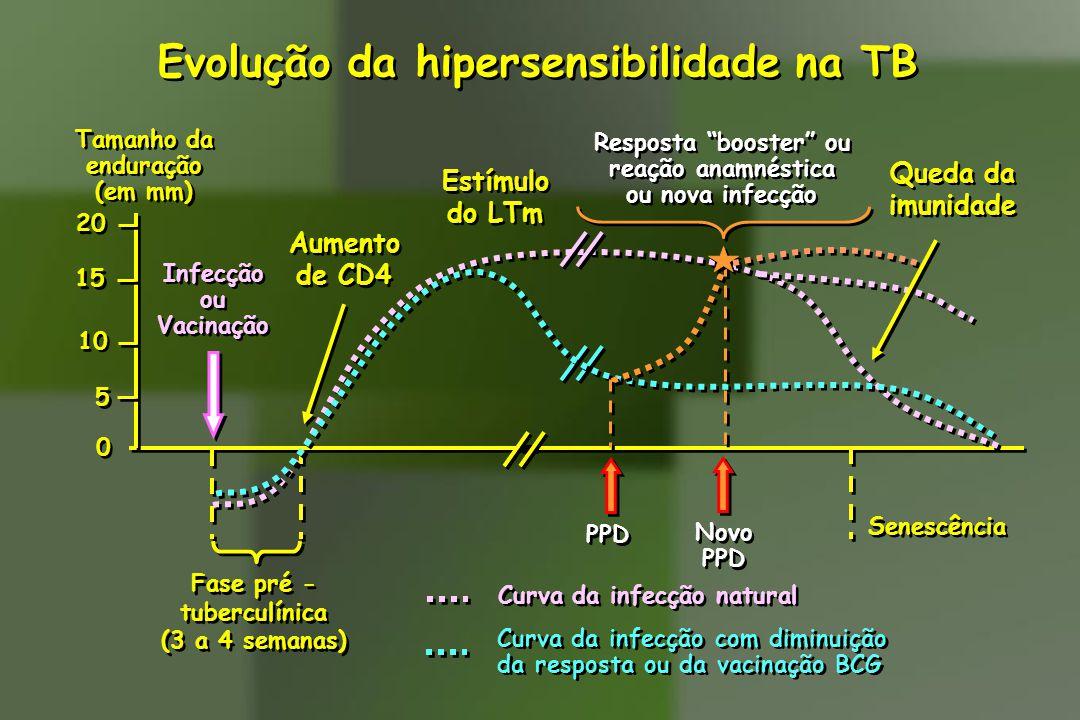 0 0 5 5 15 10 20 Tamanho da enduração (em mm) Tamanho da enduração (em mm) Senescência Curva da infecção natural Curva da infecção com diminuição da r