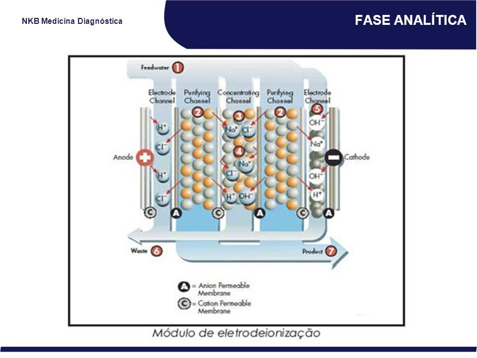 NKB Medicina Diagnóstica FASE ANALÍTICA