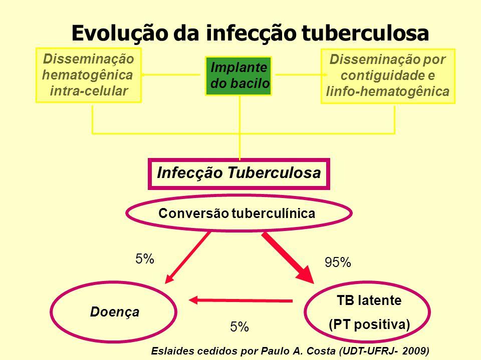Implante do bacilo Disseminação hematogênica intra-celular Disseminação por contiguidade e linfo-hematogênica Infecção Tuberculosa Doença Conversão tu