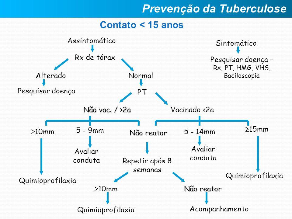 Contato < 15 anos Assintomático Sintomático PT Alterado Rx de tórax Não vac. / >2a Normal Pesquisar doença – Rx, PT, HMG, VHS, Baciloscopia Pesquisar