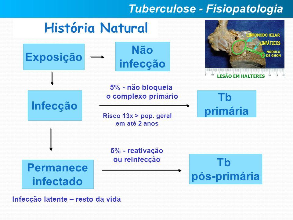 Exposição Infecção Não infecção Permanece infectado História Natural Risco 13x > pop. geral em até 2 anos Tb primária Tb pós-primária 5% - não bloquei