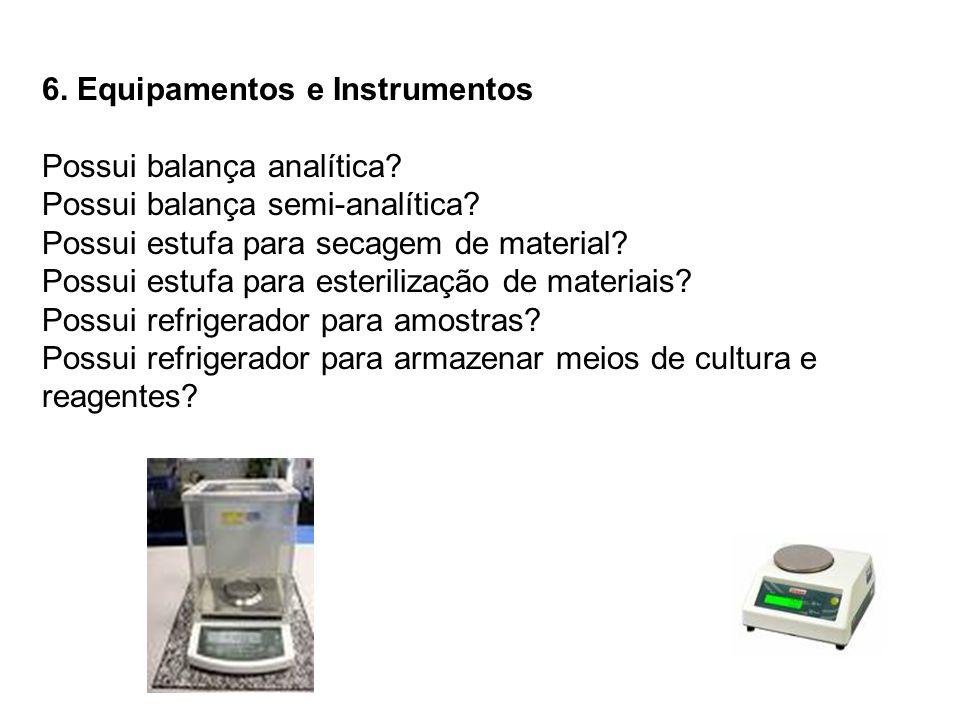 6. Equipamentos e Instrumentos Possui balança analítica? Possui balança semi-analítica? Possui estufa para secagem de material? Possui estufa para est