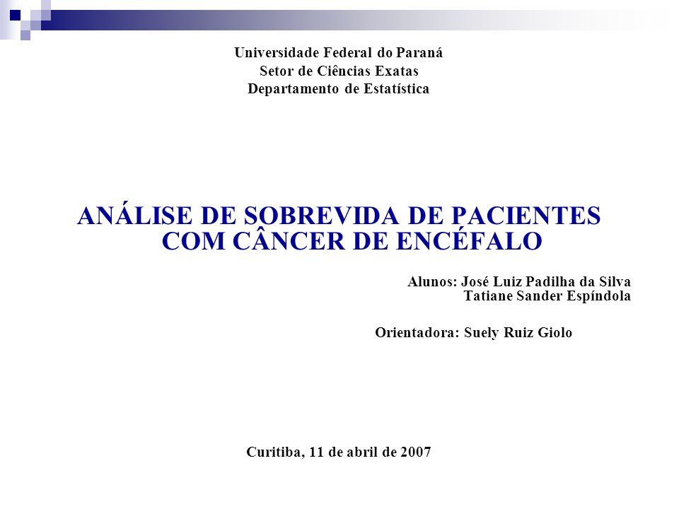Universidade Federal do Paraná Setor de Ciências Exatas Departamento de Estatística ANÁLISE DE SOBREVIDA DE PACIENTES COM CÂNCER DE ENCÉFALO Alunos: J