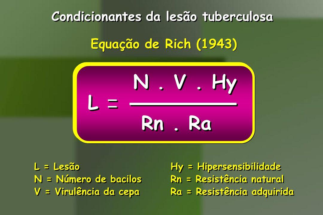 Condicionantes da lesão tuberculosa Equação de Rich (1943) L = Lesão N = Número de bacilos V = Virulência da cepa L = Lesão N = Número de bacilos V = Virulência da cepa Hy = Hipersensibilidade Rn = Resistência natural Ra = Resistência adquirida Hy = Hipersensibilidade Rn = Resistência natural Ra = Resistência adquirida N.