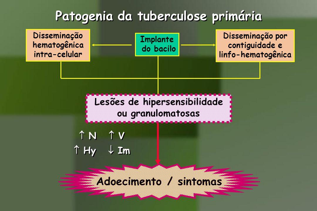 Patogenia da tuberculose primária Implante do bacilo Disseminação hematogênica intra-celular Disseminação por contiguidade e linfo-hematogênica Lesões de hipersensibilidade ou granulomatosas  N  V  Hy  Im  N  V  Hy  Im Adoecimento / sintomas