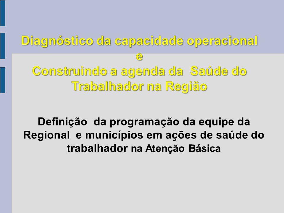 Definição da programação da equipe da Regional e municípios em ações de saúde do trabalhador na Atenção Básica