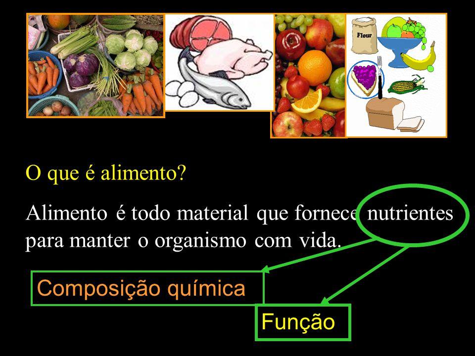 O que é alimento? Alimento é todo material que fornece nutrientes para manter o organismo com vida. Composição química Função