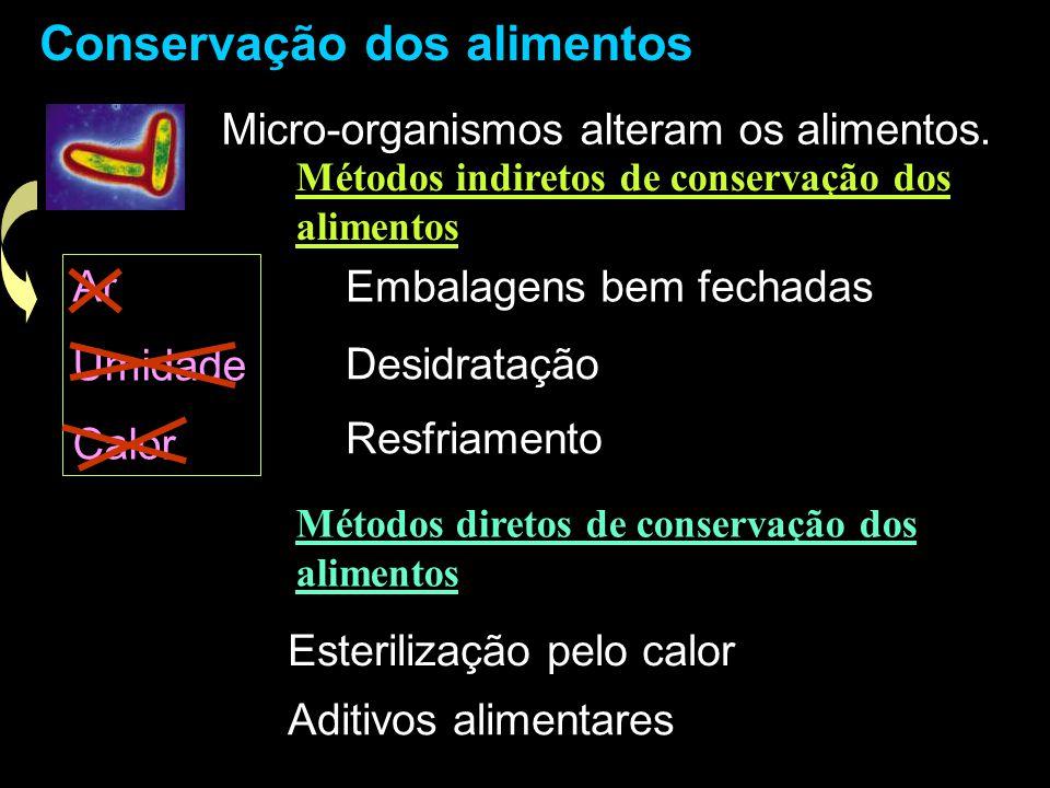 Conservação dos alimentos Micro-organismos alteram os alimentos. Ar Umidade Calor Embalagens bem fechadas Desidratação Resfriamento Métodos indiretos