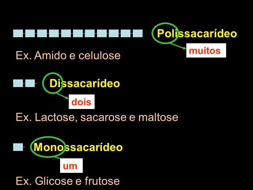 Polissacarídeo Dissacarídeo muitos dois Monossacarídeo um Ex. Amido e celulose Ex. Lactose, sacarose e maltose Ex. Glicose e frutose