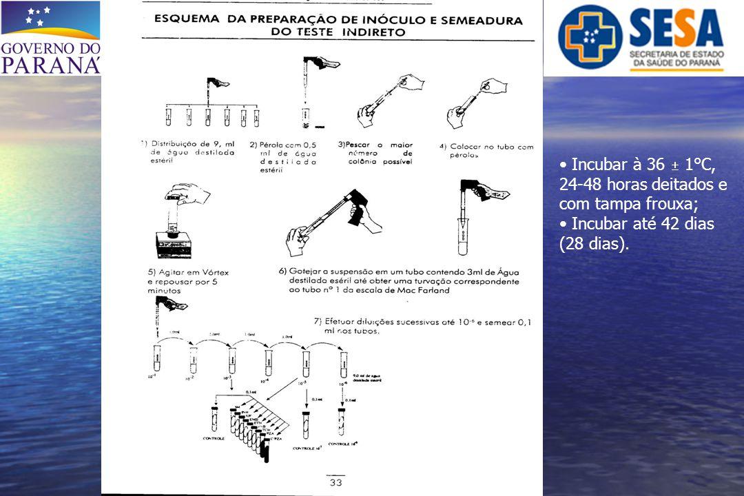 -TESTE DE SENSIBILIDADE DROGACONC.