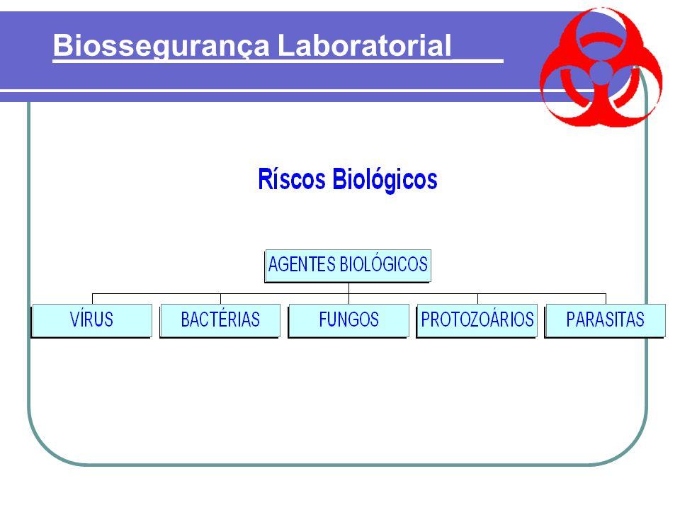  Riscos Biológicos : São os seguintes agentes: Bactérias, Fungos, Parasitas, Vírus, Clamídias, Prions. Sendo divididos em CLASSES, por ordem crescent