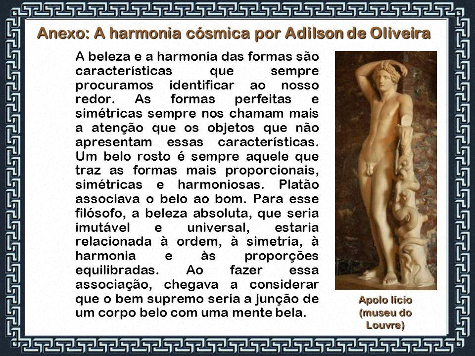Anexo: A harmonia cósmica por Adilson de Oliveira A beleza e a harmonia das formas são características que sempre procuramos identificar ao nosso redo
