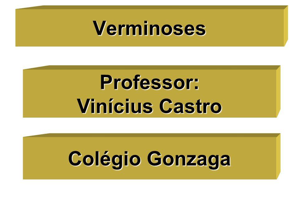 Professor: Vinícius Castro Verminoses Colégio Gonzaga