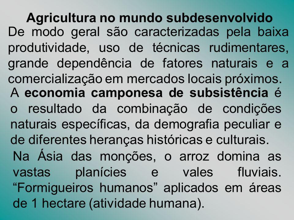 Agricultura no mundo subdesenvolvido De modo geral são caracterizadas pela baixa produtividade, uso de técnicas rudimentares, grande dependência de fa