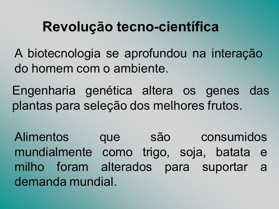 Revolução tecno-científica A biotecnologia se aprofundou na interação do homem com o ambiente. Engenharia genética altera os genes das plantas para se