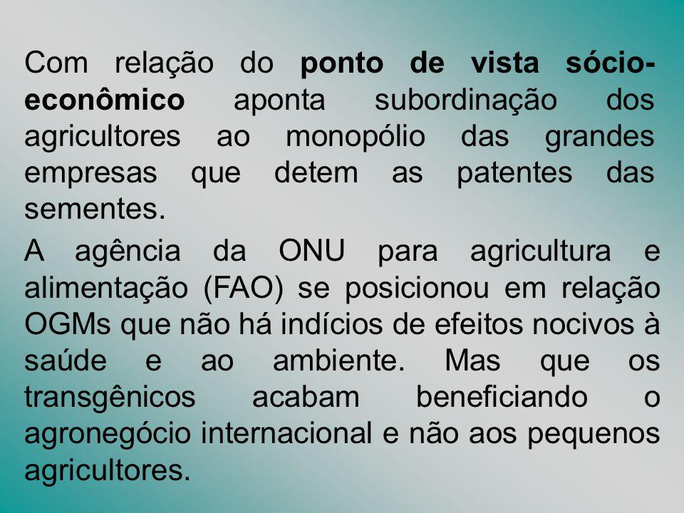 Com relação do ponto de vista sócio- econômico aponta subordinação dos agricultores ao monopólio das grandes empresas que detem as patentes das sement
