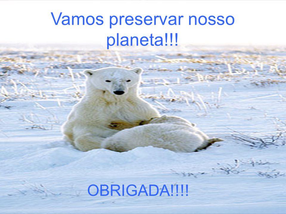 Vamos preservar nosso planeta!!! OBRIGADA!!!!