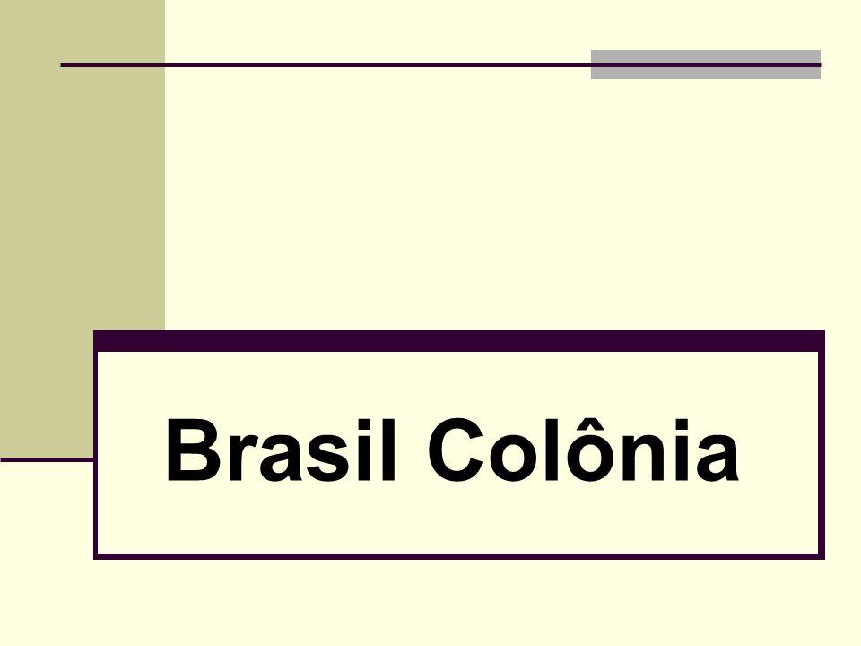 O Brasil pré-colonial Nas três primeiras décadas do século XVI, o litoral do Brasil permaneceu uma espécie de terra de ninguém.