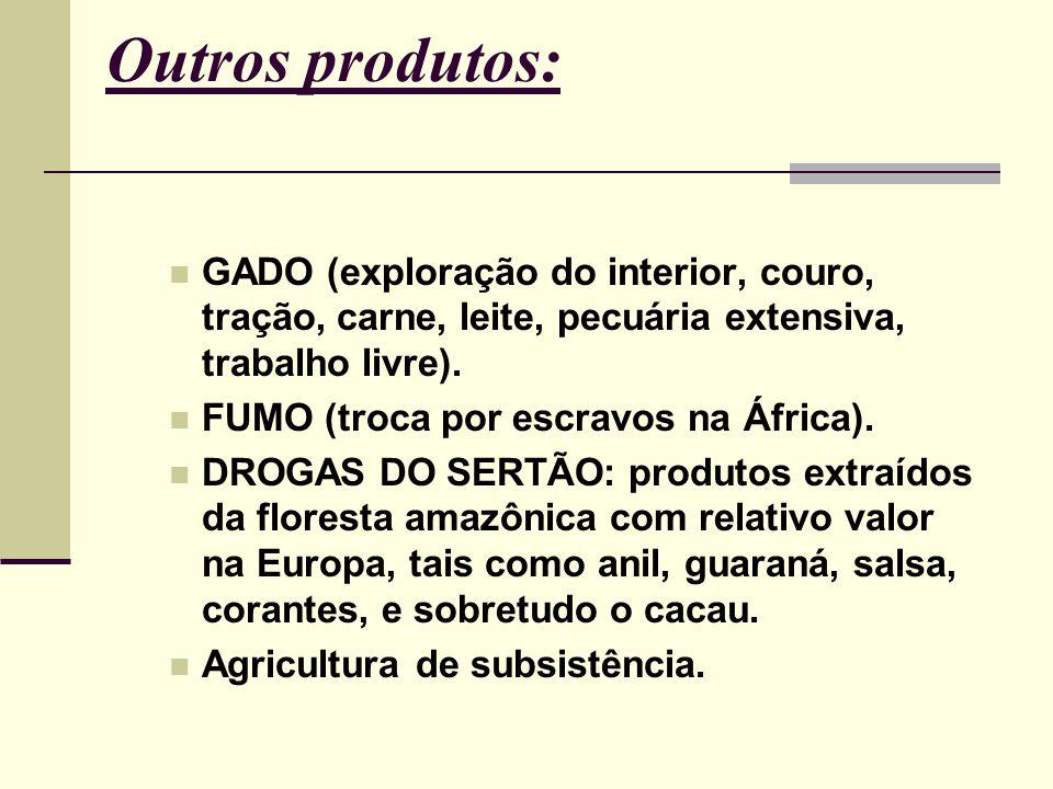 Outros produtos: GADO (exploração do interior, couro, tração, carne, leite, pecuária extensiva, trabalho livre). FUMO (troca por escravos na África).